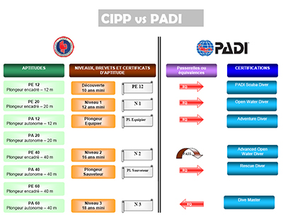 comparatif-niveaux-padi-cipp.jpg